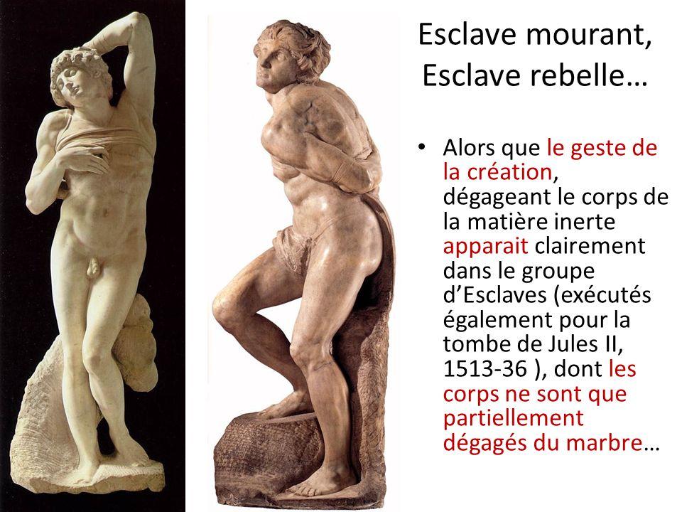 Esclave mourant, Esclave rebelle… Alors que le geste de la création, dégageant le corps de la matière inerte apparait clairement dans le groupe dEscla