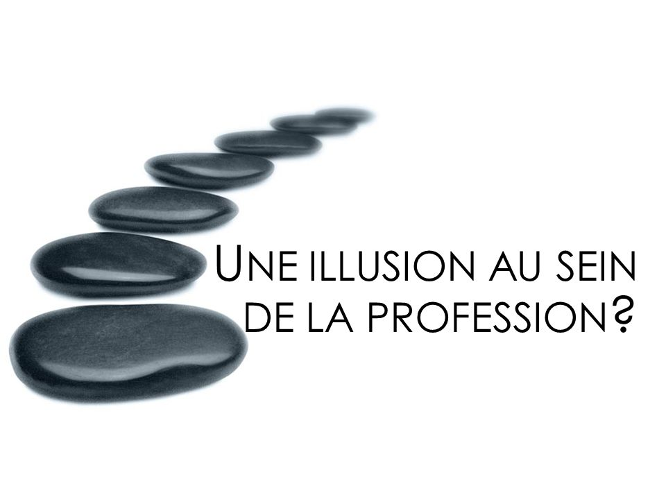 U NE ILLUSION AU SEIN DE LA PROFESSION