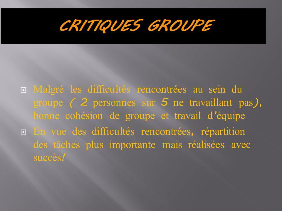 Malgré les difficultés rencontrées au sein du groupe ( 2 personnes sur 5 ne travaillant pas ), bonne cohésion de groupe et travail d équipe En vue des