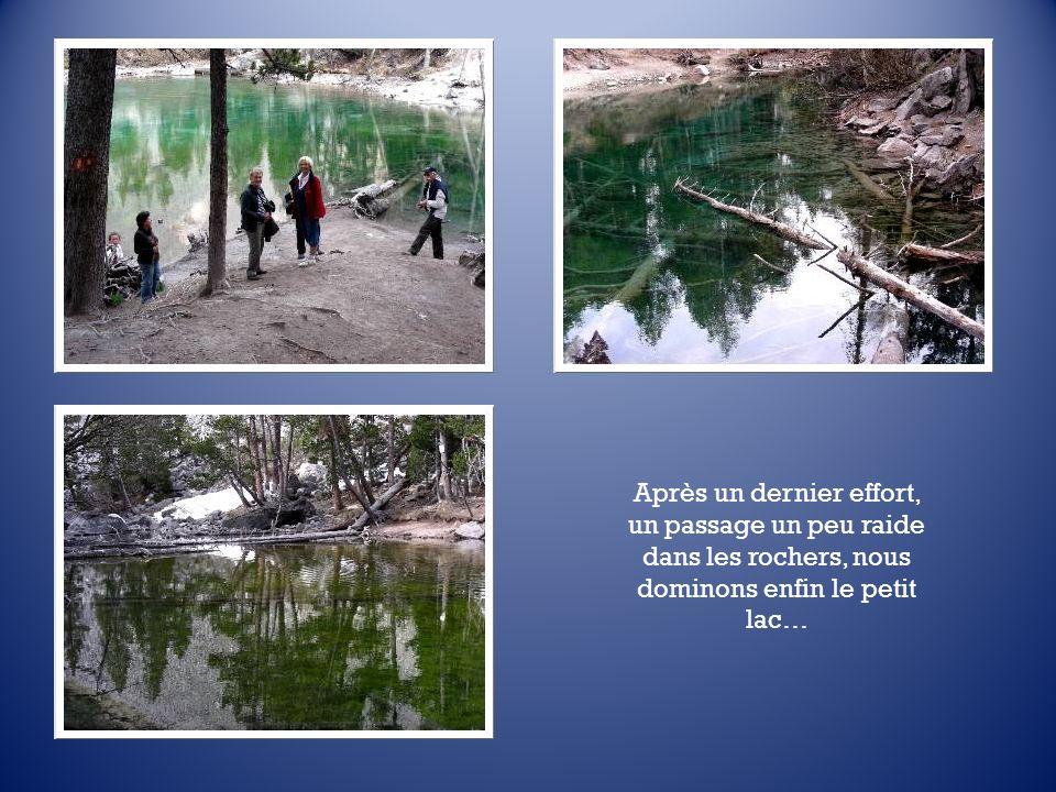 Enfin, nous lapercevons : au pied dun immense éboulis, le Lac Vert doit son nom à une algue qui le tapisse.