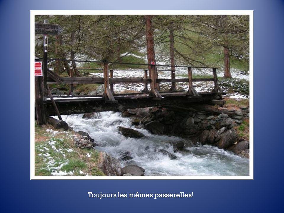 Le torrent est alimenté par les eaux dévalant de deux cascades, au Plan de la Fonderie. Ce lieu très beau marque la fin de notre exploration de laprès