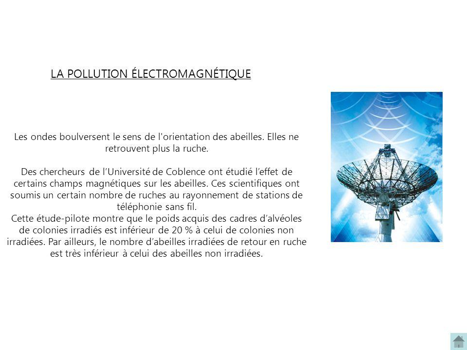 LA POLLUTION ÉLECTROMAGNÉTIQUE Les ondes boulversent le sens de l'orientation des abeilles. Elles ne retrouvent plus la ruche. Des chercheurs de lUniv