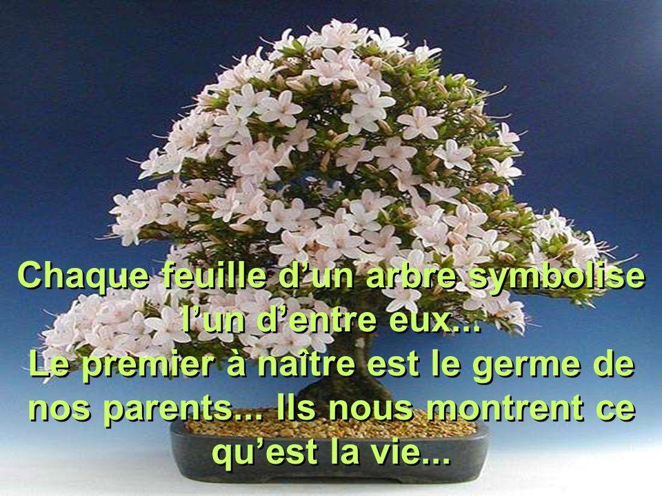 Chaque feuille dun arbre symbolise lun dentre eux...