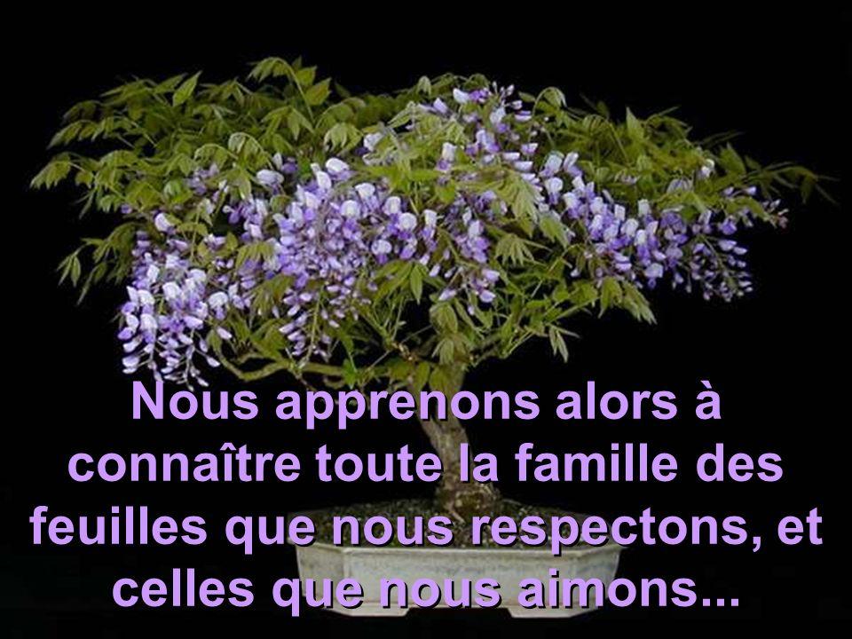 Puis viennent les amis fraternels, les fils avec qui nous partageons notre espace afin quils puissent fleurir comme nous...
