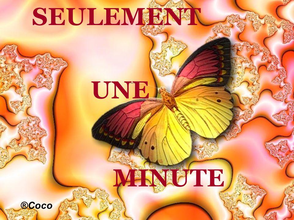 SEULEMENT UNE MINUTE ®Coco