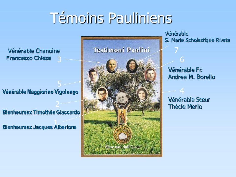 Témoins Pauliniens 1 2 3 4 5 6 7 Bienheureux Jacques Alberione Bienheureux Timothée Giaccardo Vénérable Maggiorino Vigolungo V énérable Chanoine Francesco Chiesa Vénérable S.