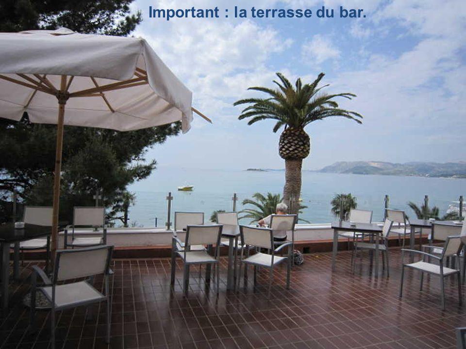 La vue de la terrasse du bar, Notre petite île.
