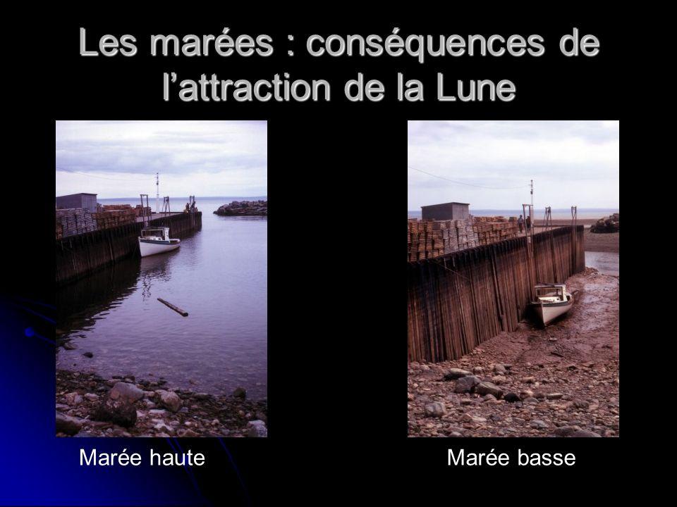 Les marées : conséquences de lattraction de la Lune Marée hauteMarée basse