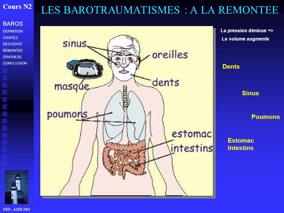 NED - ASEB 2002 LES BAROTRAUMATISMES : A LA REMONTEE Cours N2 La pression diminue => Le volume augmente Dents Sinus Poumons Estomac Intestins BAROS DE