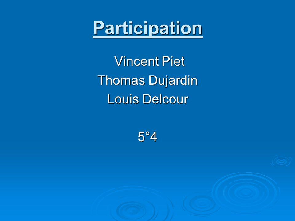 Participation Vincent Piet Vincent Piet Thomas Dujardin Louis Delcour 5°4