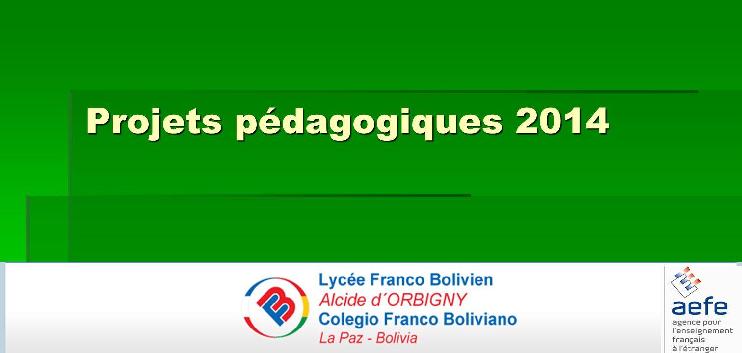 Projets pédagogiques 2014