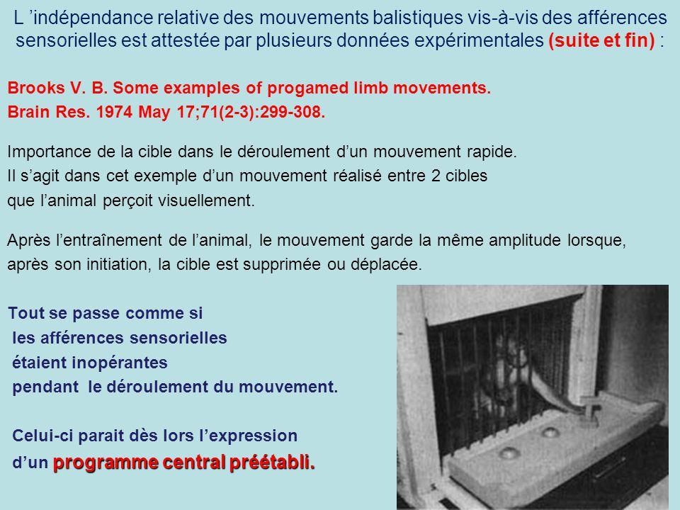 L indépendance relative des mouvements balistiques vis-à-vis des afférences sensorielles est attestée par plusieurs données expérimentales (suite et f