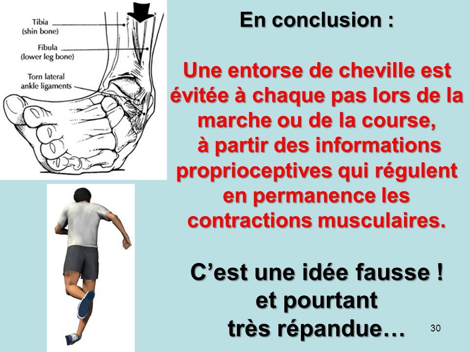 En conclusion : Une entorse de cheville est évitée à chaque pas lors de la marche ou de la course, à partir des informations proprioceptives qui régul