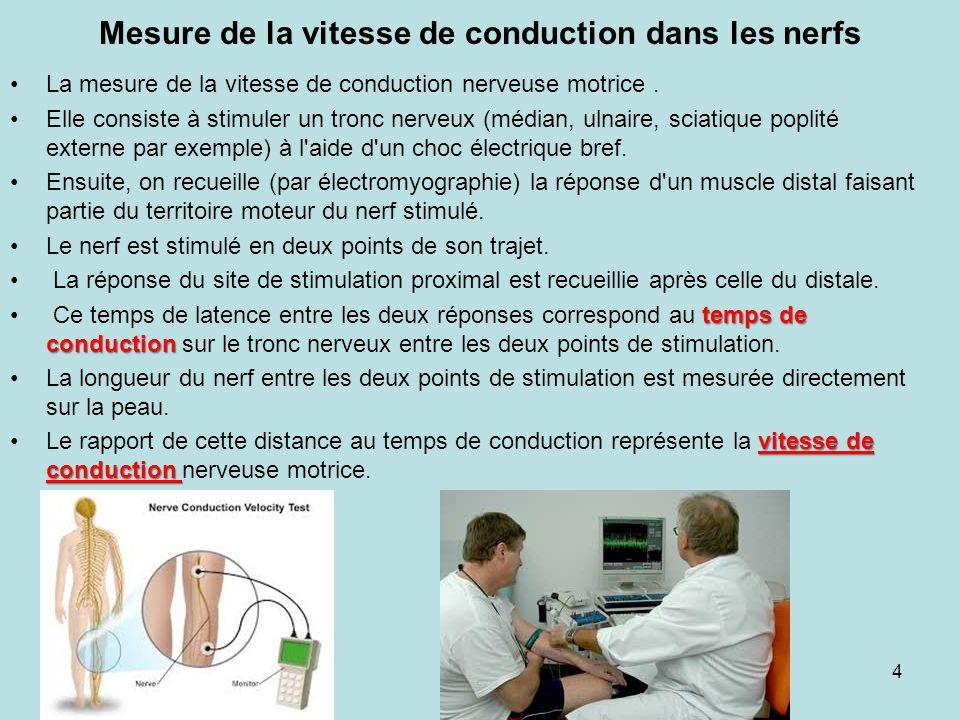 Mesure de la vitesse de conduction dans les nerfs La mesure de la vitesse de conduction nerveuse motrice. Elle consiste à stimuler un tronc nerveux (m