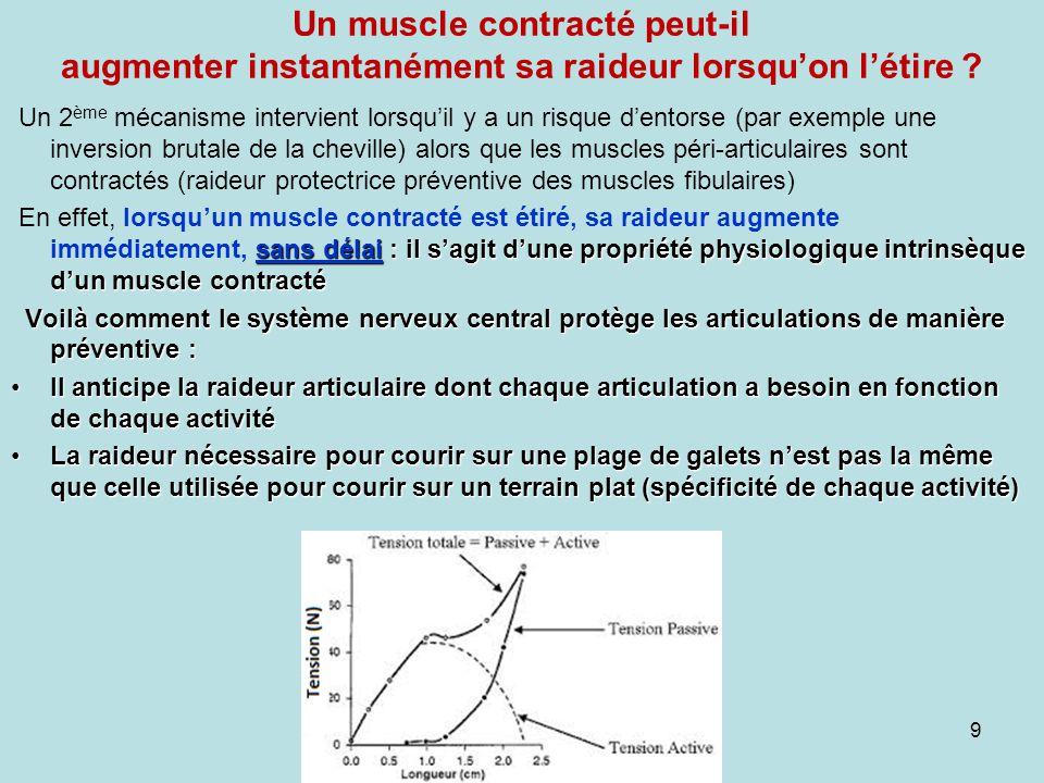 Un muscle contracté peut-il augmenter instantanément sa raideur lorsquon létire ? 9 Un 2 ème mécanisme intervient lorsquil y a un risque dentorse (par