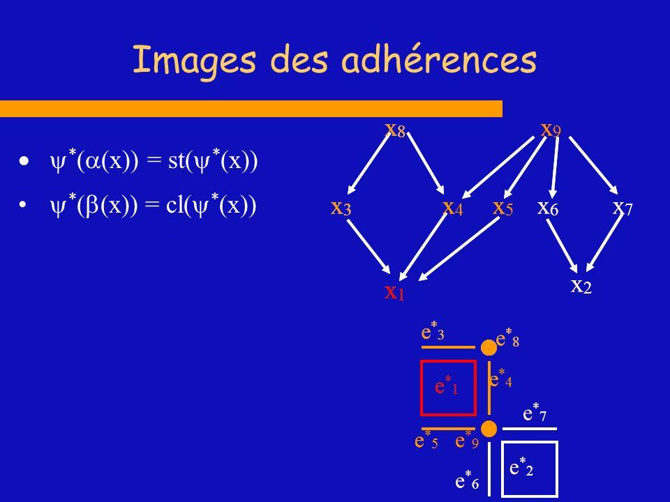 Images des adhérences * ( (x)) = st( * (x)) * ( (x)) = cl( * (x)) x1x1 x2x2 x3x3 x4x4 x5x5 x6x6 x7x7 x8x8 x9x9 e*1e*1 e*2e*2 e*3e*3 e*4e*4 e*5e*5 e*6e
