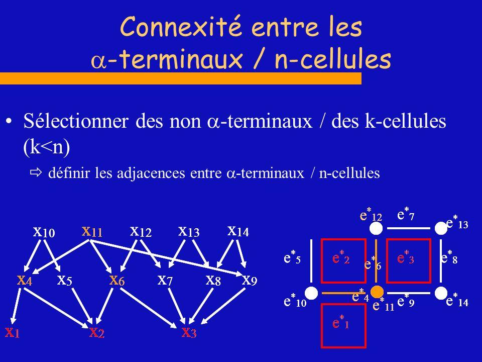 Connexité entre les -terminaux / n-cellules Sélectionner des non -terminaux / des k-cellules (k<n) définir les adjacences entre -terminaux / n-cellule
