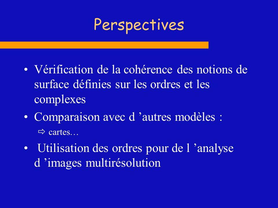 Perspectives Vérification de la cohérence des notions de surface définies sur les ordres et les complexes Comparaison avec d autres modèles : cartes…