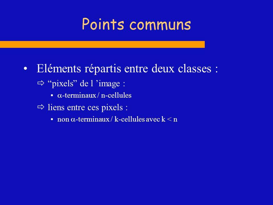 Points communs Eléments répartis entre deux classes : pixels de l image : -terminaux / n-cellules liens entre ces pixels : non -terminaux / k-cellules
