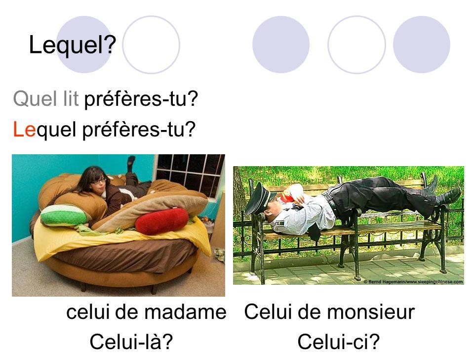 Lequel? Quel lit préfères-tu? Lequel préfères-tu? celui de madame Celui de monsieur Celui-là? Celui-ci?