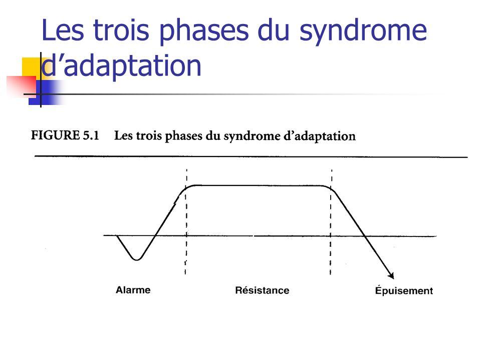 Les trois phases du syndrome dadaptation