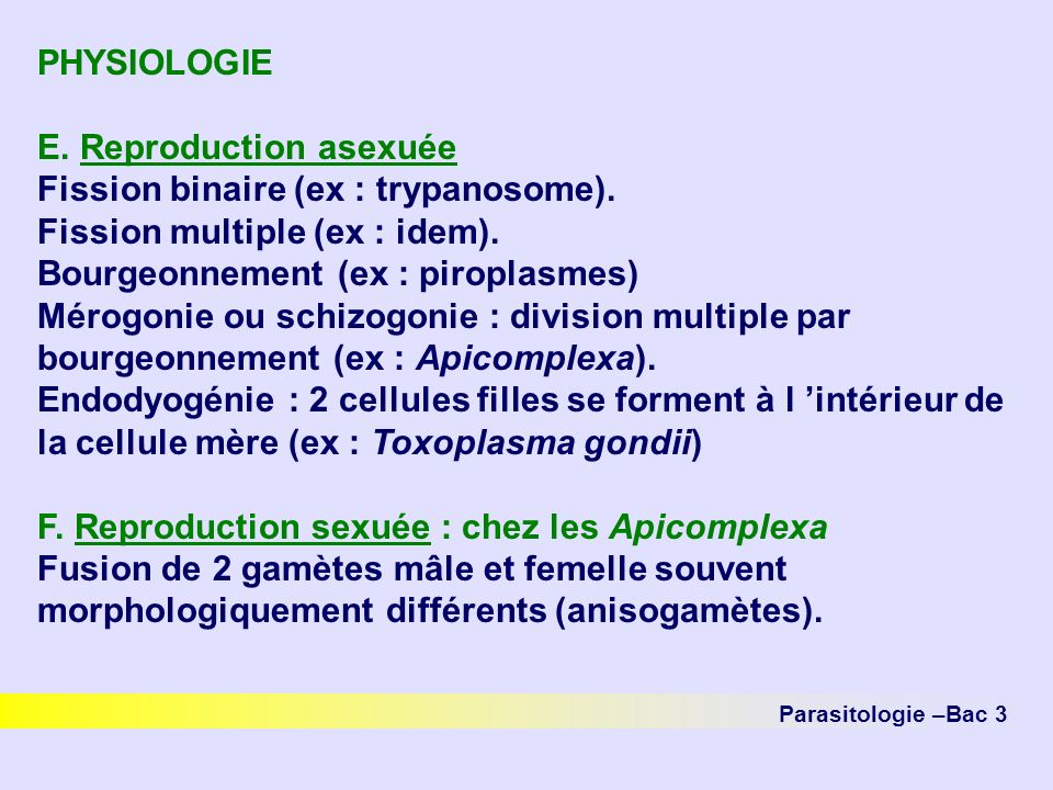 Parasitologie –Bac 3 PHYSIOLOGIE E. Reproduction asexuée Fission binaire (ex : trypanosome). Fission multiple (ex : idem). Bourgeonnement (ex : piropl