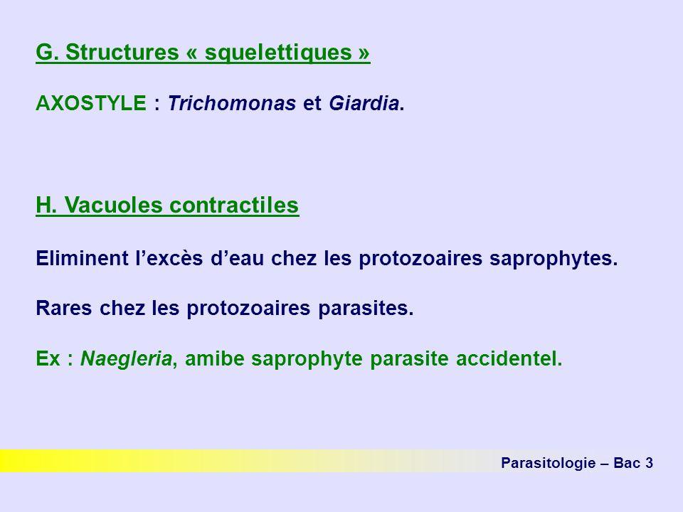 G.Structures « squelettiques » AXOSTYLE : Trichomonas et Giardia.