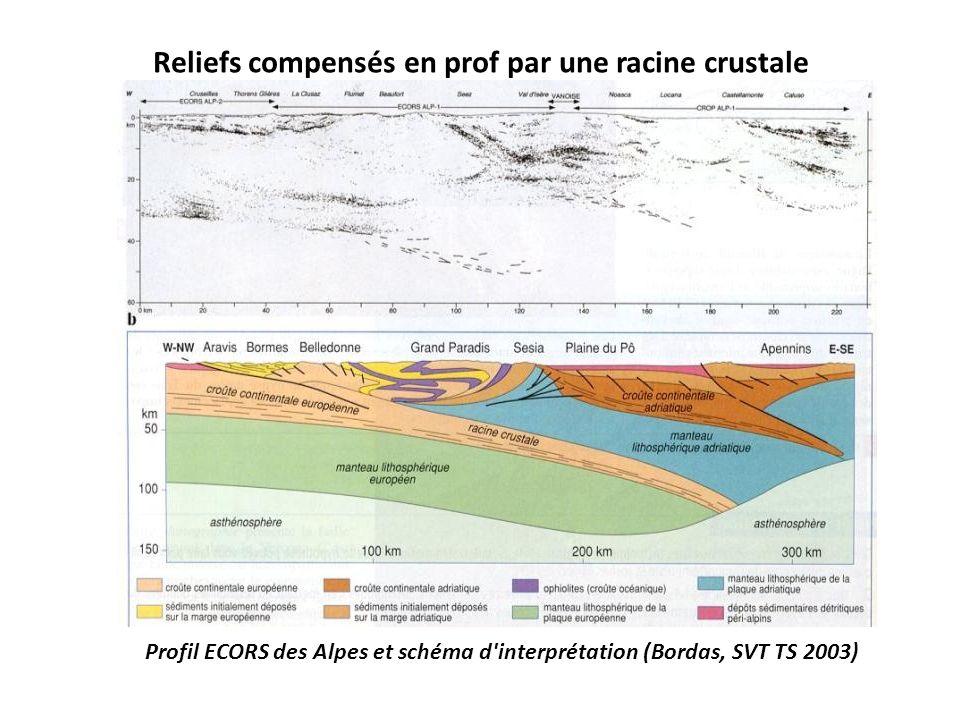 Reliefs compensés en prof par une racine crustale Profil ECORS des Alpes et schéma d'interprétation (Bordas, SVT TS 2003)