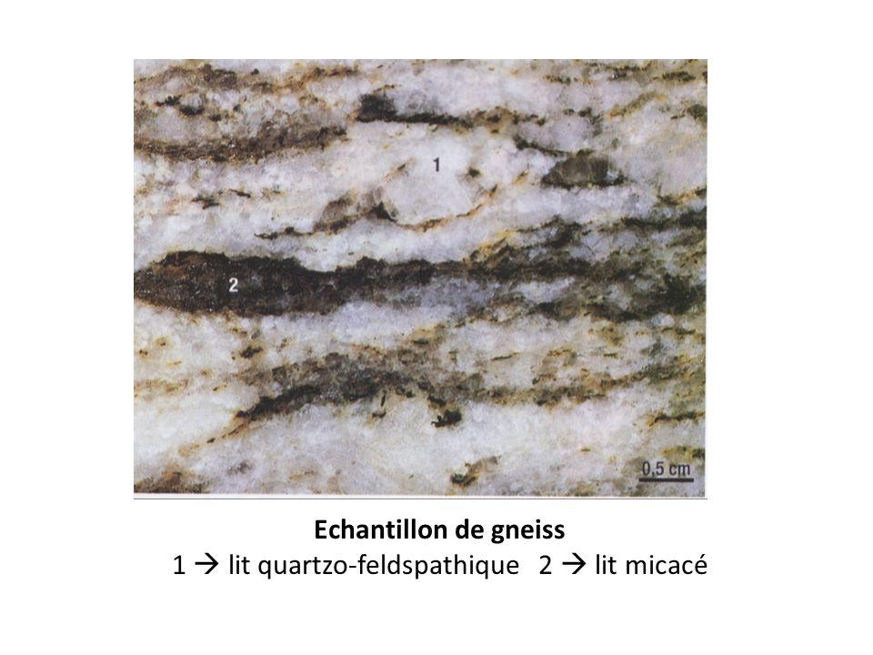Echantillon de gneiss 1 lit quartzo-feldspathique 2 lit micacé