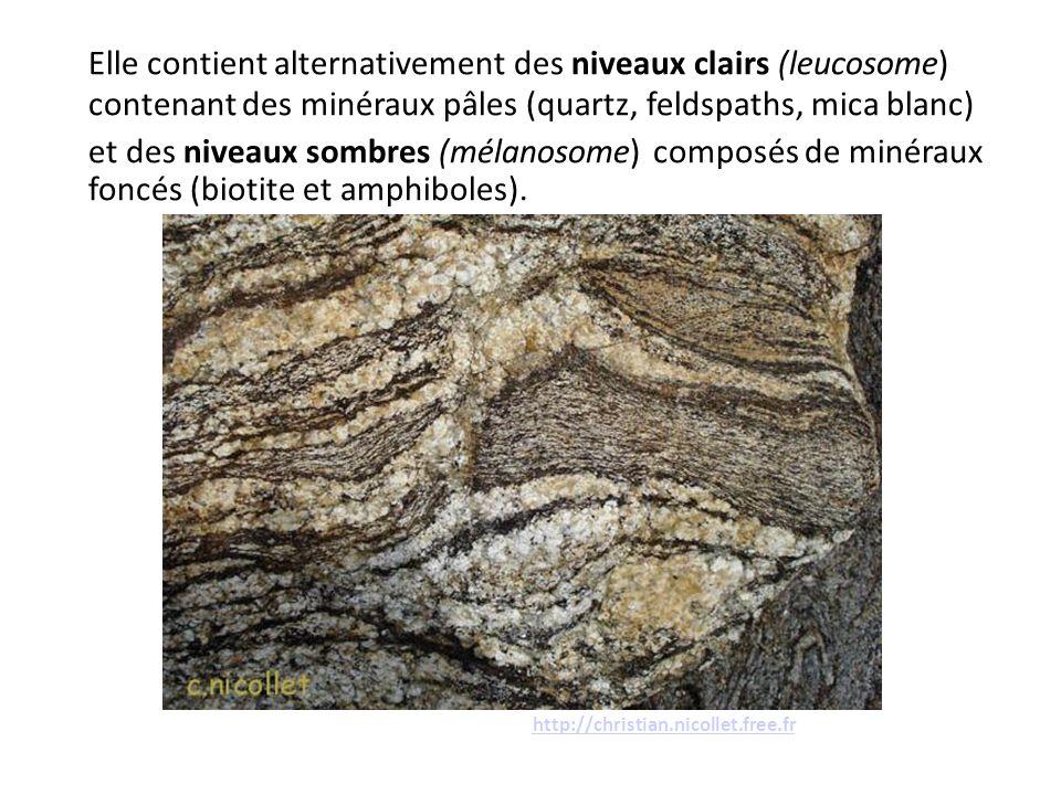 Elle contient alternativement des niveaux clairs (leucosome) contenant des minéraux pâles (quartz, feldspaths, mica blanc) et des niveaux sombres (mél