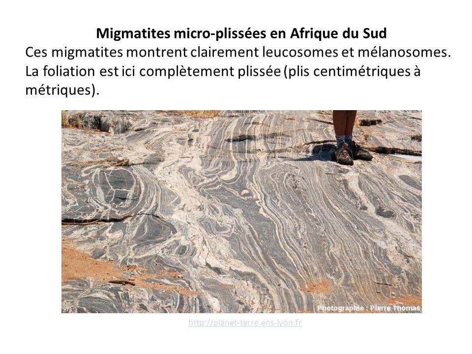 Migmatites micro-plissées en Afrique du Sud Ces migmatites montrent clairement leucosomes et mélanosomes. La foliation est ici complètement plissée (p