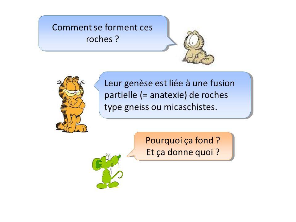Comment se forment ces roches ? Leur genèse est liée à une fusion partielle (= anatexie) de roches type gneiss ou micaschistes. Pourquoi ça fond ? Et