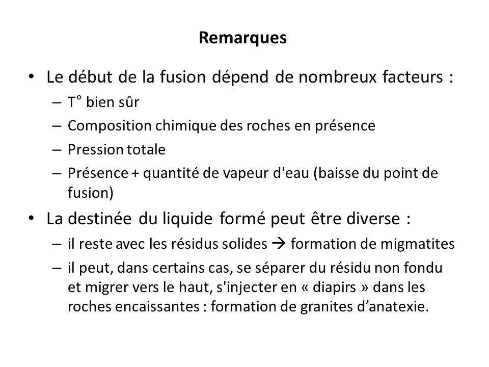 Remarques Le début de la fusion dépend de nombreux facteurs : – T° bien sûr – Composition chimique des roches en présence – Pression totale – Présence