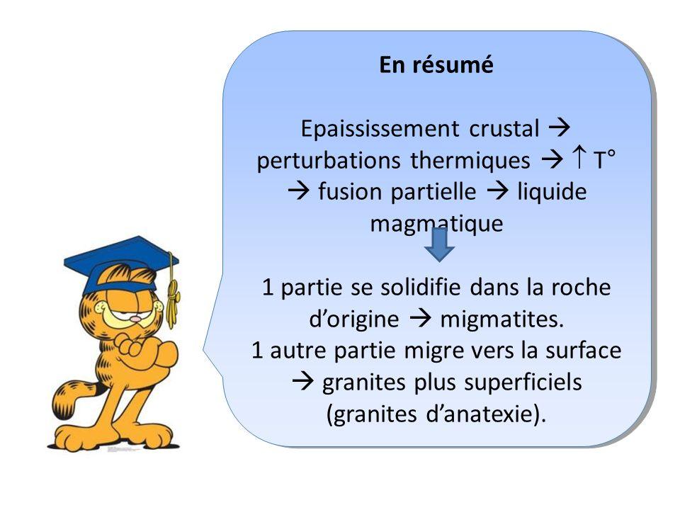 En résumé Epaississement crustal perturbations thermiques T° fusion partielle liquide magmatique 1 partie se solidifie dans la roche dorigine migmatites.