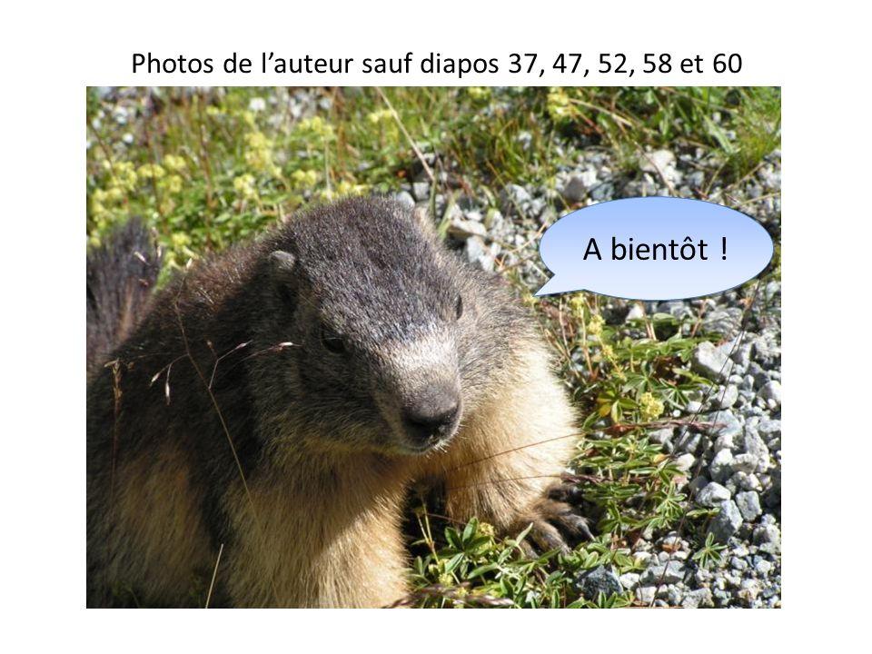 Photos de lauteur sauf diapos 37, 47, 52, 58 et 60 A bientôt !