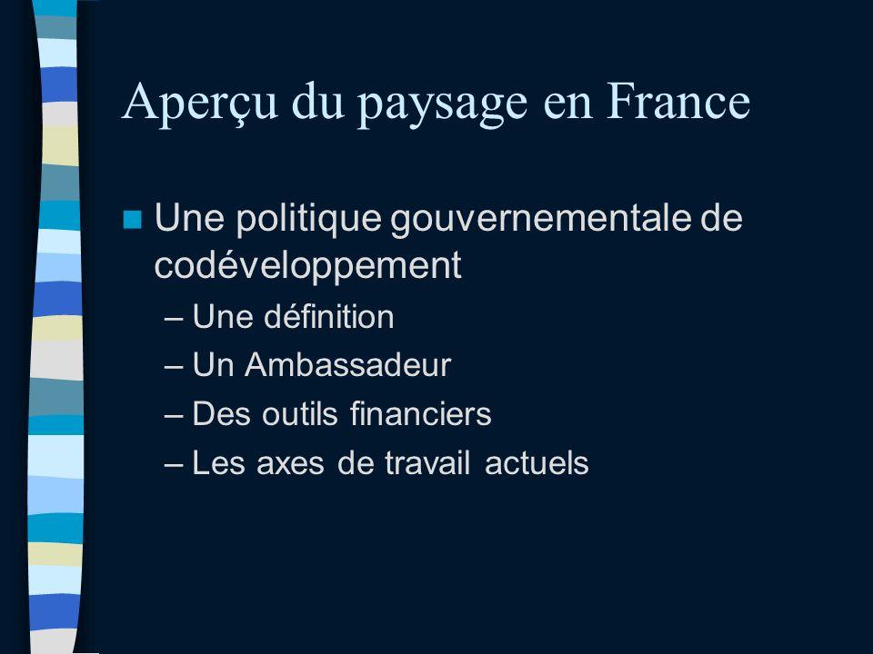 Aperçu du paysage en France Une politique gouvernementale de codéveloppement –Une définition –Un Ambassadeur –Des outils financiers –Les axes de travail actuels