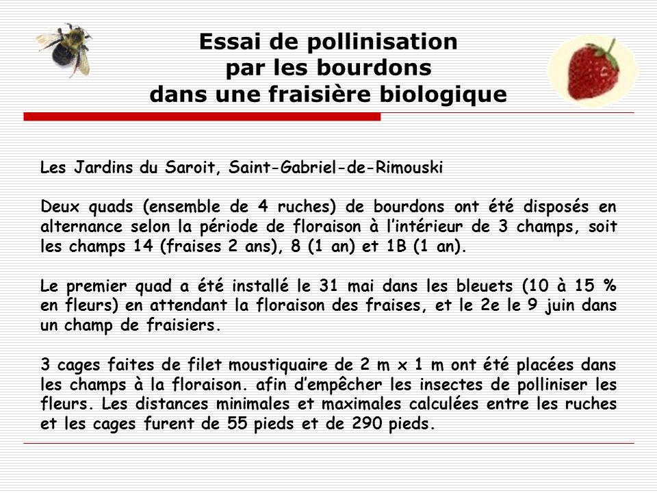Les Jardins du Saroit, Saint-Gabriel-de-Rimouski Deux quads (ensemble de 4 ruches) de bourdons ont été disposés en alternance selon la période de flor
