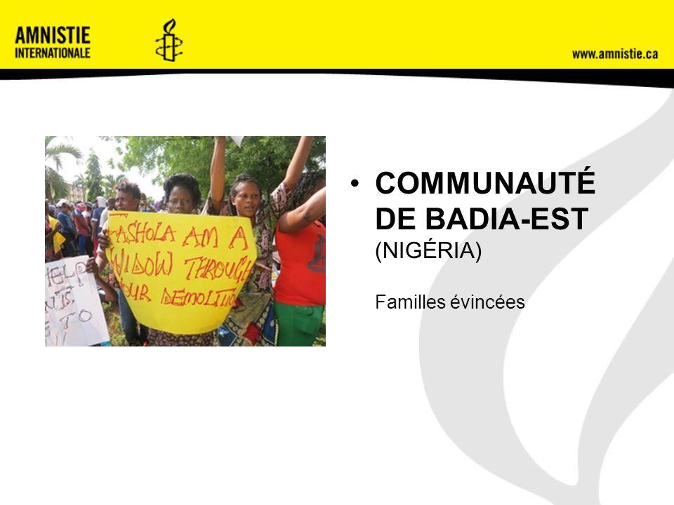COMMUNAUTÉ DE BADIA-EST (NIGÉRIA) Familles évincées