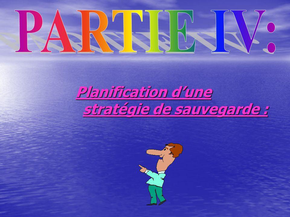 Planification dune stratégie de sauvegarde :