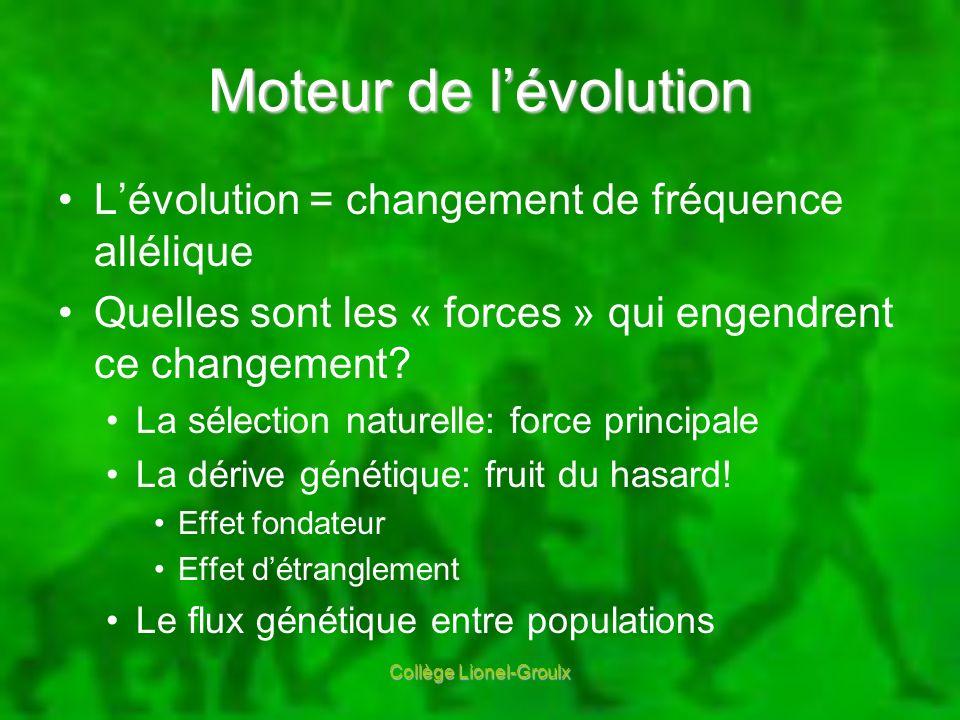 Moteur de lévolution Lévolution = changement de fréquence allélique Quelles sont les « forces » qui engendrent ce changement? La sélection naturelle:
