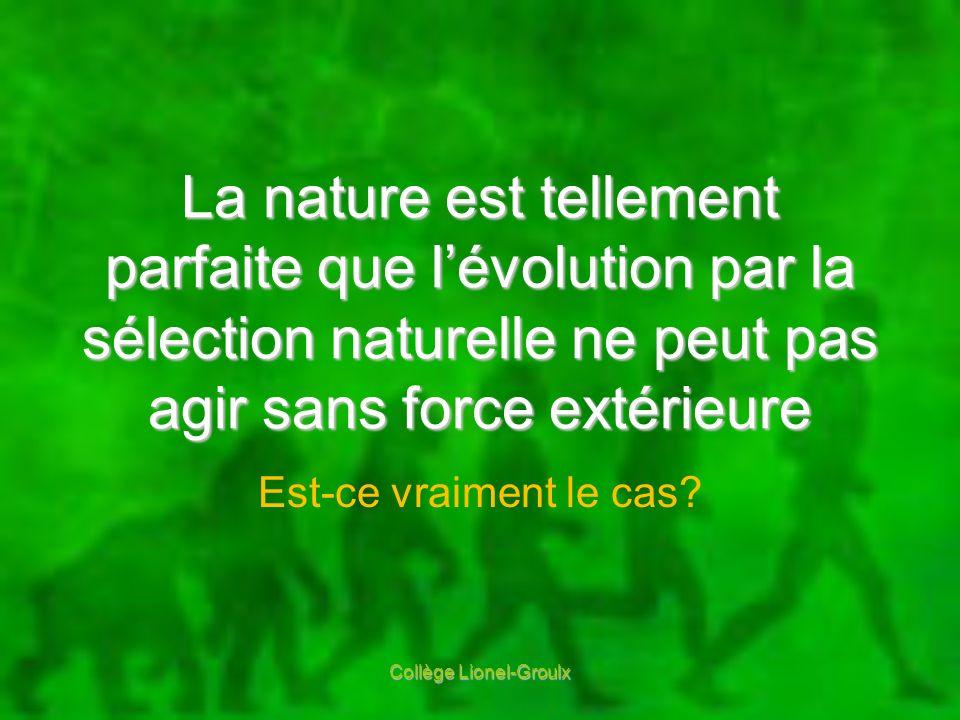 La nature est tellement parfaite que lévolution par la sélection naturelle ne peut pas agir sans force extérieure Est-ce vraiment le cas? Collège Lion