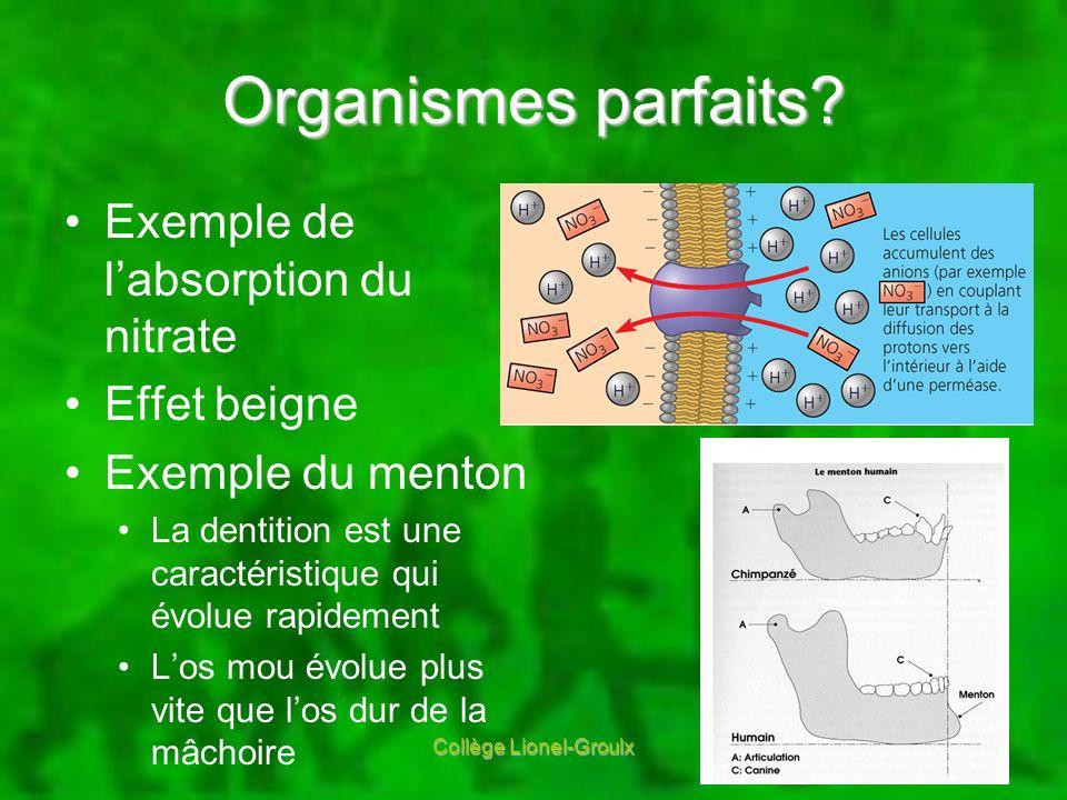 Organismes parfaits? Exemple de labsorption du nitrate Effet beigne Exemple du menton La dentition est une caractéristique qui évolue rapidement Los m