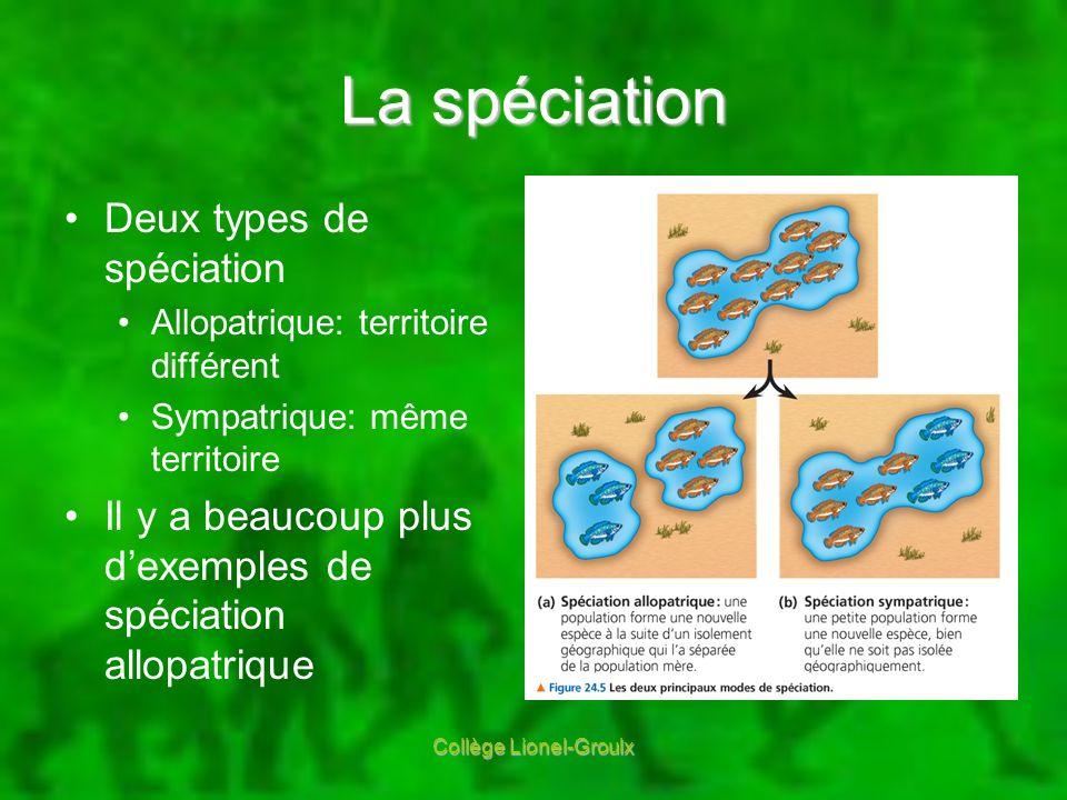 La spéciation Deux types de spéciation Allopatrique: territoire différent Sympatrique: même territoire Il y a beaucoup plus dexemples de spéciation al