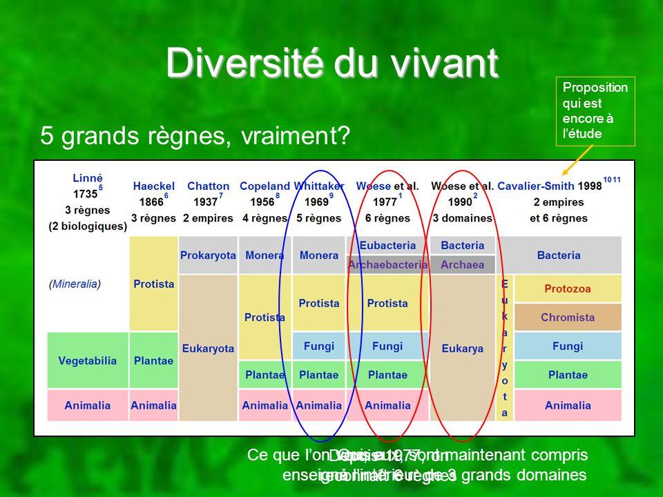 Qui, eux, sont maintenant compris à lintérieur de 3 grands domaines Diversité du vivant 5 grands règnes, vraiment? Depuis 1977, on reconnaît 6 règnes
