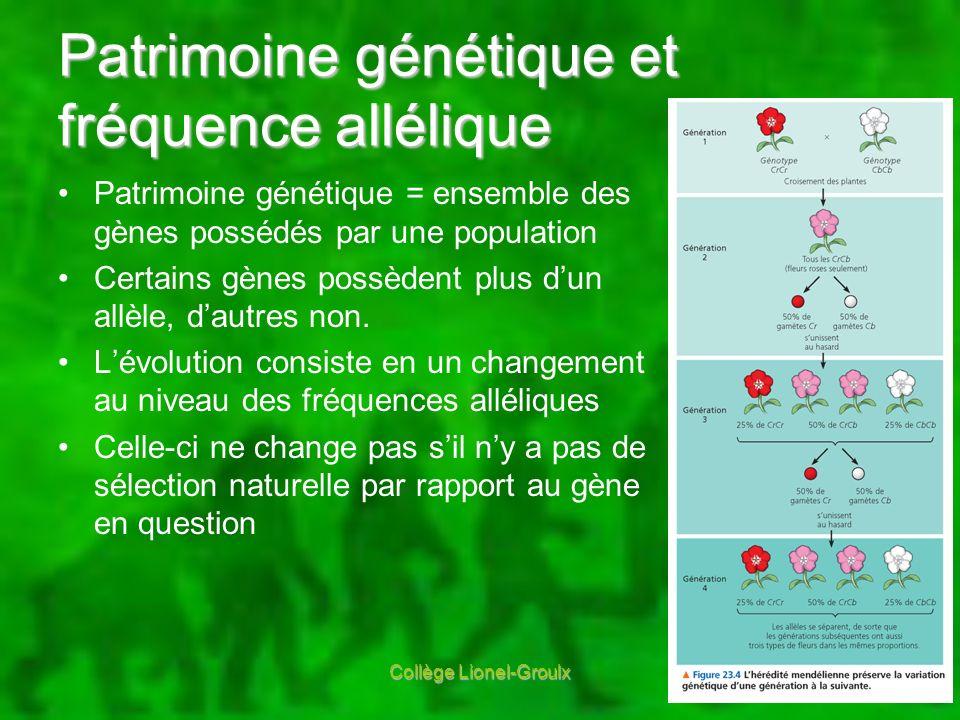 Équilibre dHardy-Weinberg Fréquence allélique prévisible lorsque: Population extrêmement grande Pas de flux génétique Pas de mutation Accouplement aléatoire Pas de sélection naturelle Avec les proportions… p 2 + 2pq + q 2 = 1 AA + 2Aa + aa = 1 Collège Lionel-Groulx