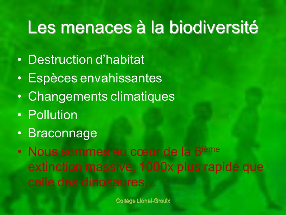 Collège Lionel-Groulx Les menaces à la biodiversité Destruction dhabitat Espèces envahissantes Changements climatiques Pollution Braconnage Nous somme