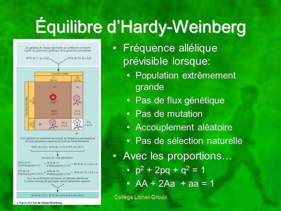 Équilibre dHardy-Weinberg Fréquence allélique prévisible lorsque: Population extrêmement grande Pas de flux génétique Pas de mutation Accouplement alé