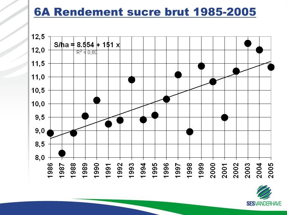 6A Rendement sucre brut 1985-2005