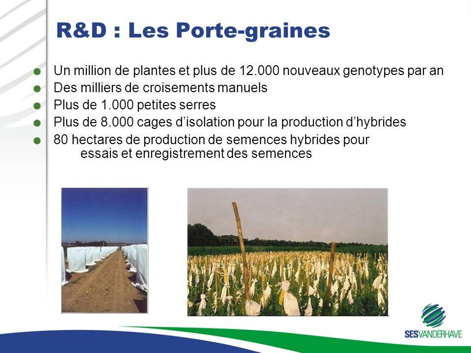 R&D : Les Porte-graines Un million de plantes et plus de 12.000 nouveaux genotypes par an Des milliers de croisements manuels Plus de 1.000 petites serres Plus de 8.000 cages disolation pour la production dhybrides 80 hectares de production de semences hybrides pour essais et enregistrement des semences Focus on quality