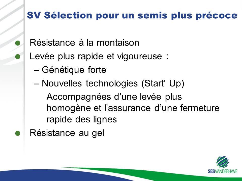 SV Sélection pour un semis plus précoce Résistance à la montaison Levée plus rapide et vigoureuse : –Génétique forte –Nouvelles technologies (Start Up
